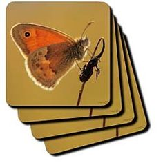 Small Heath (Coenonympha pamphilus) - Set Of 8 Ceramic Tile Coasters $29.99
