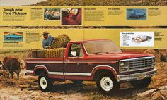 1980 Ford Pickup-12-13