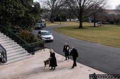 Dogs have officially returned to the White House after a four-year hiatus. The post Champ & Major Biden Have Arrived At The White House appeared first on Scary Mommy.