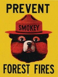 smokey bear vintage - Google Search