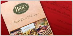 Brio Brochure Made By Dupli-Systems #Brochure #Print #DupliSystems