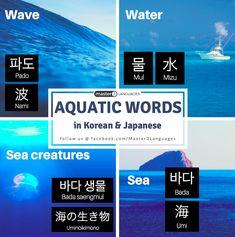 Aquatic Words in Korean and Japanese