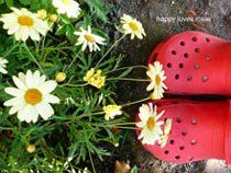 red garden shoes