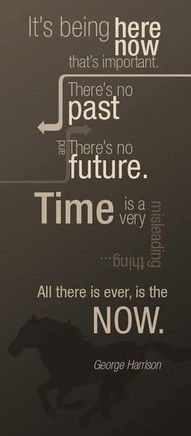 All you ever really possess is the NOW. It can be influenced by the PAST and it will influence the FUTURE, so sieze it and squeeze all the good out of it you possibly can. Every Moment!! #quotes #inspirations #attitude Get started on a better NOW by taking the first step here: http://JTDreamLife.com
