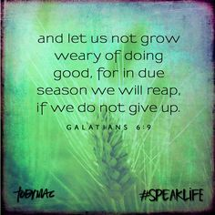 #speaklife--I so need to keep this in mind this school year.