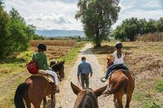 What a great way to explore the countryside with 3Senores! Beautiful landscapes, well-behaved horses, and knowledgeable guides.