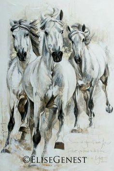 Horse Drawings, Animal Drawings, Art Drawings, Oil Pastel Colours, Horse Artwork, Exotic Art, Horse Sculpture, Cute Little Animals, Expo