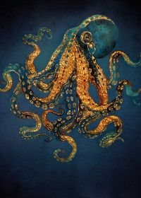 Underwater Dream IV by SpaceFrog Designs metal posters is part of Art painting Ocean - See amazing artworks of Displate artists printed on metal Easy mounting, no power tools needed Watercolor Art, Octopus Art, Metal Posters, Amazing Art, Nature Art, Nature Posters, Octopus Painting, Art Inspiration, Ocean Art