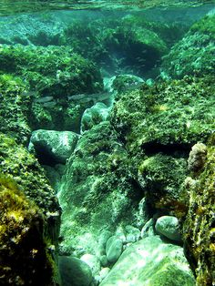 Snorkeling excursion on Kommos beach. The best place is on the eastern part of the Kommos Beach, near the cliffs. Heraklion, Greece Culture, Greece Fashion, Underwater Fish, Greece Holiday, Crete Greece, Greece Travel, Home And Away, Europe