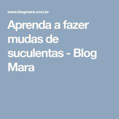Aprenda a fazer mudas de suculentas - Blog Mara