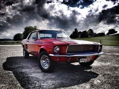 mustang 67 Mustangs, Dream Cars, Madness, Amazing, Photography, Design, Art, Art Background, Photograph