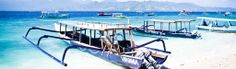 DIVING  The diving: Indonesia boasts an aquatic Babylon – the warm, clear waters around Gili Trawangan (off Lombok) are home to more than 3500 marine species including reef sharks, turtles, pygmy seahorses and colourful corals.  Why learn here: competition between mostly European-run dive operators (like Manta Dive – www.manta-dive.com – and Blue Marlin – www.bluemarlindive.com), keeps course fees in check on this relaxed little island, which is also great for snorkelling.