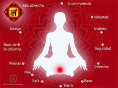 """El primer chakra: Rojo rubí ~ La Flor de la Vida - Medicina Integrativa.- El primer chakra - muladhara- o centro energético resuena con el color rojo rubí y nos aporta el arraigo al territorio. Cuando nuestro primer centro no está adecuadamente equilibrado podemos presentar síntomas que reflejan la pérdida de energía, una fuente conectada con el reino del agua que es nuestra """"pila"""" de la vida.Podemos observar síntomas como: * mareos: relacionados con el oído y el riñón, órganos claves en…"""