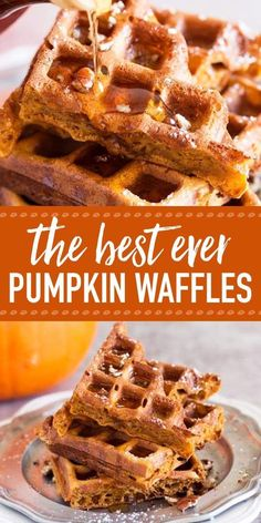 These simple homemade pumpkin waffles definitely need to happen in your waffle maker this autumn! The recipe makes a quick batter from scratch for an easy fall breakfast. Bake to crispy and fluffy perfection in your waffle iron, then load them with your f Brunch Recipes, Gourmet Recipes, Crepe Recipes, Crepes, Fall Breakfast, Breakfast Bake, Pumpkin Breakfast, Breakfast Ideas, Autumn Breakfast Recipes