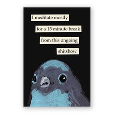 Meditate Magnet – The Mincing Mockingbird & The Frantic Meerkat Half Elf, Bird Meme, Bird Quotes, Bird Sayings, Funny Birds, Thats The Way, Lol, Just For Laughs, Illustrations
