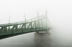 Lost in the fog by kelemenbali99 check out more here https://cleaningexec.com
