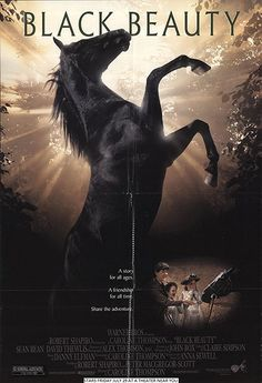 BLACK BEAUTY Beautiful pitch perfect adaptation of the classic novel is perfectly cast including the horses narration acted by Alan Cummings. Director Caroline Thompson did it just right. Black Beauty 1994, Caroline Thompson, Pitch Perfect, Good Movies, I Movie, Novels, It Cast, Horses, Adventure