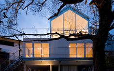 house with oak tree by maniera architects and associates in hyogo, japan