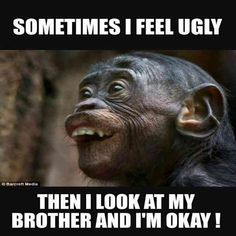 25 Funny Memes About Brothers and Touching Brother Quotes Anyone Who . - 25 funny memes about brothers and touching brother quotes Anyone who has a sibling can refer to it - Super Funny Memes, Crazy Funny Memes, Really Funny Memes, Stupid Memes, Funny Relatable Memes, Haha Funny, Stupid Funny, Funny Memes About Love, Funny Life