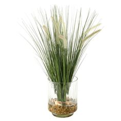 D and W Silks Onion Grass Silk Planter *** Check out the image by visiting the link.