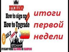 Btchamp Сергей подводит итоги первой недели