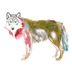 wolf painting - wolf art - original watercolor style painting in red / yellow goldenrod / sienna brown / scarlet / grey / prussian blue. $130.00, via Etsy.