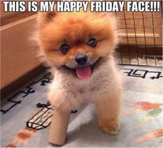 Happy #Friday! #TGIF #Weekend