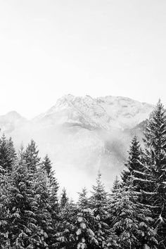 Pine Forest Mountains Printable Forest Art Nordic Landscape Modern Print Pine Wall Art Mountain Wall Decor Do B&w Wallpaper, Wallpaper Winter, Iphone Wallpaper Christmas, Winter Wallpapers, Winter Screensavers, Computer Wallpaper, Photos Black And White, Black White, Landscape Photography