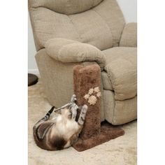 Our Corner Furniture Protector is a great piece if your don't want to buy a new couch! This scratching post for cats is one of our hottest items because of the savings you get, & one of our best scratching post for cats because of its purpose. Save the fu Corner Furniture, Cat Furniture, Pet Shop, Big House Cats, Benadryl For Cats, Siberian Cats For Sale, Couch Protector, Cat Care Tips, Pet Care