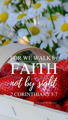 Bible Verses To Go - Inspirational Verse of the Day Biblical Quotes, Bible Verses Quotes, Spiritual Quotes, Quotes Quotes, Prayer Scriptures, Bible Prayers, Walk By Faith, Faith In God, Free Phone Wallpaper Download
