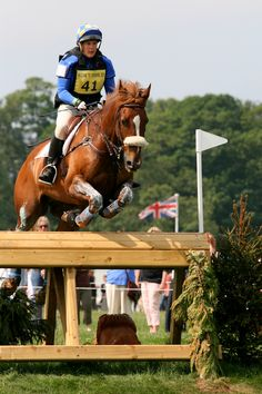 15 Event horse/dressage/cross country/show jumping/equine photography
