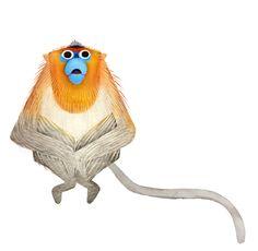Golden-snub-nosed_monkey_brendan_wenzel