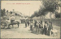 A.T.V.-1597-GERONA, Ferial de ganado. Posteriorment passeig del General Mendoza. A 'esquerra el convent del Mínims o de Sant Francesc de Paula, a la dreta el Pont del Carme. | Desconegut