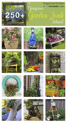 My Hometalk Garden Junk Clipboard, It's Bigger and Better! My Hometalk Garden Junk Clipboard, It's Bigger and Better!