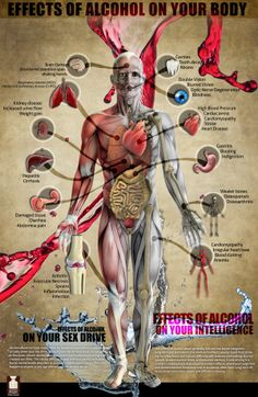 effects of alcohol on the body Infographic | by Raul Lopez Pomares for icondesignfl.com