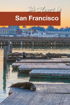 Exploring San Francisco with only 24 hours.