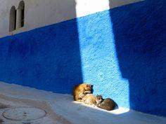 Warm sun ;Morocco