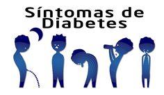 La diabetes es un desorden del metabolismo, el proceso que convierte el alimento que ingerimos en energía. La insulina es el factor má...