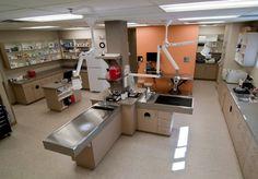 Southwest Veterinary Hospital - veterinary hospital treatment room