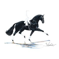 Kunster Dressage Horse and Rider Print Las Vegas