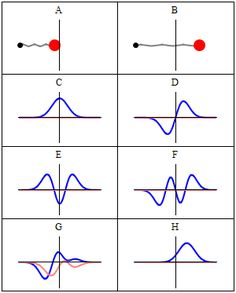Comparison of classical and quantum harmonic oscillator conceptions for a single spinless particle. The two processes differ greatly. The classical process (A–B) is represented as the motion of a particle along a trajectory. The quantum process (C–H) has no such trajectory. Rather, it is represented as a wave. Panels (C–F) show four different standing wave solutions of the Schrödinger equation. Panels (G–H) further show two different wave functions that are solutions of the Schrödinger ...