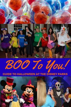 You should head to Walt Disney World or Disneyland in the fall. Why? This guide…