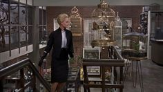 Tippi Hedren - The Birds (Alfred Hitchcock, 1963)