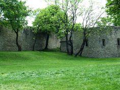Hainburg an der Donau, Asutria, ruins. Bratislava, Plants, Plant, Planets