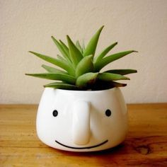 """señor suculenta - cute DIY with old mug and paint pen. Cute clusstered as """"family"""" with different size mugs and plants"""