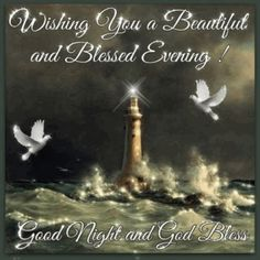 Wishing You A Beautiful Blessed Evening goodnight good night goodnight quotes good evening good evening quotes goodnight quote goodnite goodnight quotes for friends goodnight quotes for family god bless goodnight quotes Good Night Meme, Good Night Love Images, Good Night Prayer, Good Night Everyone, Good Night Friends, Good Night Blessings, Good Night Messages, Good Morning Good Night, Good Night Quotes