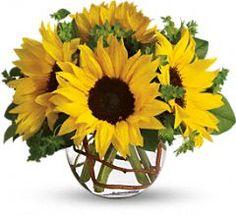 Sunny Sunflowers  http://review.teleflora.com/flowers/bouquet/sunny-sunflowers-372672p.asp