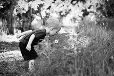 Let them explore and play. Children's photography. Dandelion.