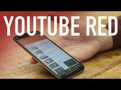 YouTube Red è realtà: niente pubblicità e possibilità di scaricare i video per chi si abbona  #follower #daynews - http://www.keyforweb.it/youtube-red-e-realta-niente-pubblicita-e-possibilita-di-scaricare-i-video-per-chi-si-abbona/