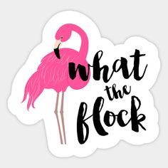 Shop What The Flock Flamingo flamingo stickers designed by heartlocked as well as other flamingo merchandise at TeePublic. Flamingo Wallpaper, Flamingo Art, Pink Flamingos, Good Night Princess, Flamingo Birthday, Girls Weekend, Moon Child, Painting Patterns, Pink Aesthetic